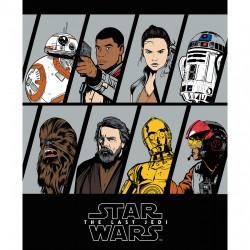 Star Wars - 90cm Panel...